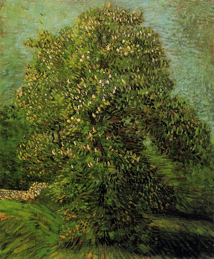 1887 Chestnut Tree in Bloom oil on canvas